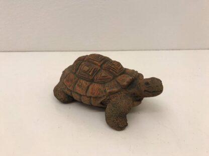 Skildpadde str. 20 x 15 cm.