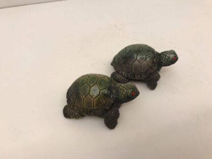 Skildpadde str 6 cm